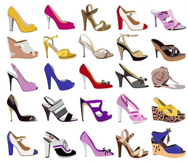 白で隔離される女性の靴のコレクション