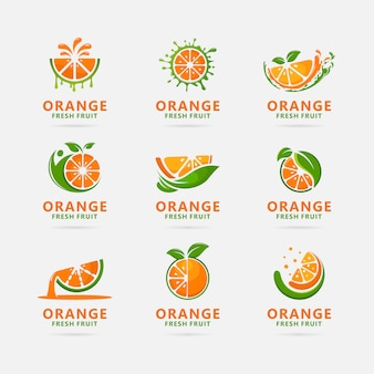 Collection of orange fruit logo design