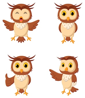 Collection of owl illustrations