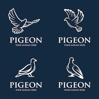 Collection of pigeon logo template