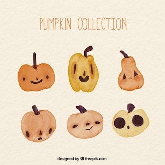 Collection of pumpkins in watercolor