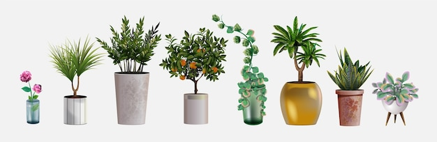 Collection of realistic detailed house or office plant for interior design and decoration. tropical and mediterranean plant and flowers for interior decor of home or office