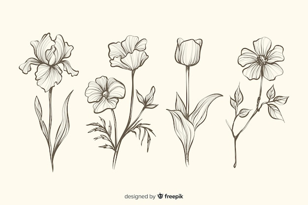 Collection of realistic hand drawn botanical flowers