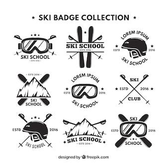 Raccolta di retro logo sci