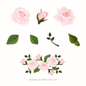 Collection of roses in realistic design