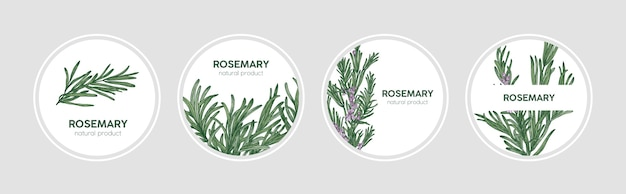 Collection of round labels decorated with rosemary sprigs