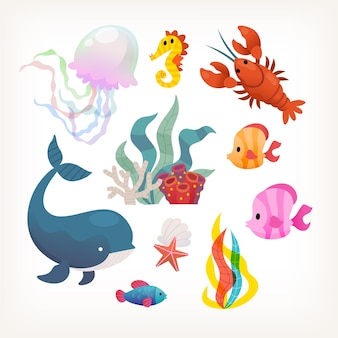 Collection of sea animals and plants