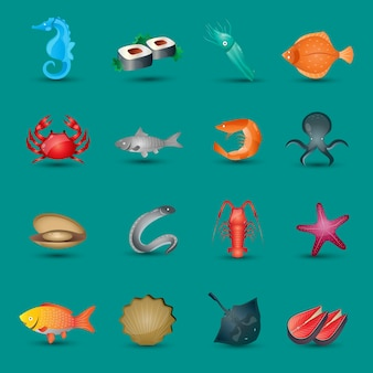 Collection of sea animals