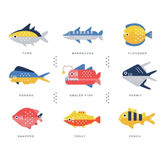 Collection of sea and river fish and lettering name in english  illustrations