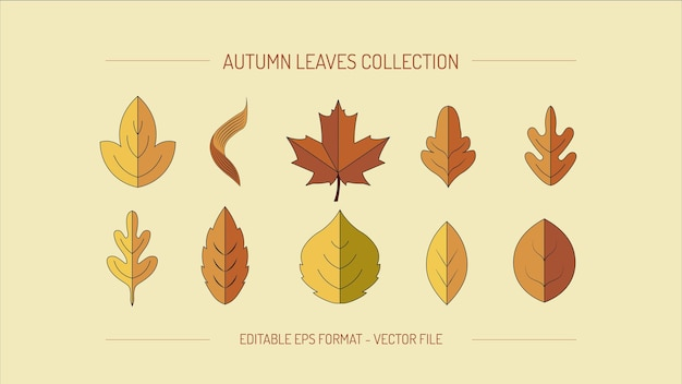 Collection or set of autumn leaves in flat