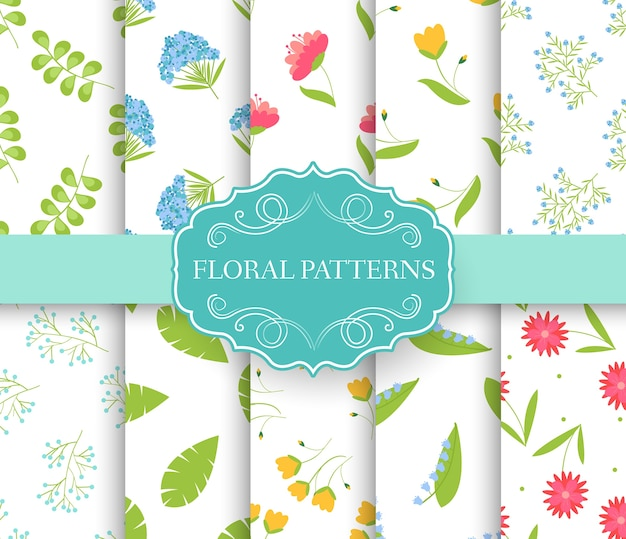 Collection set of floral seamless pattern. leaves, spring, flowers, summer, autumn with label logo.
