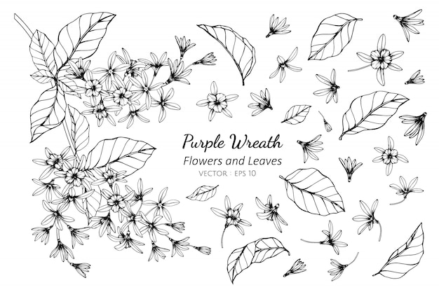 Collection set of purple wreath flower and leaves drawing illustration.