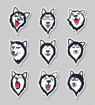 Collection of siberian husky stickers