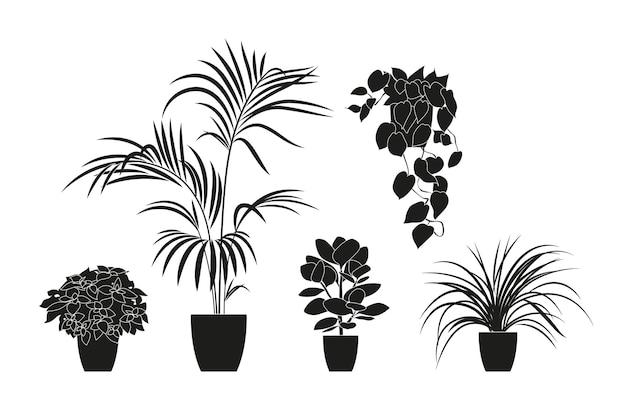 黒い色の観葉植物のコレクションのシルエット