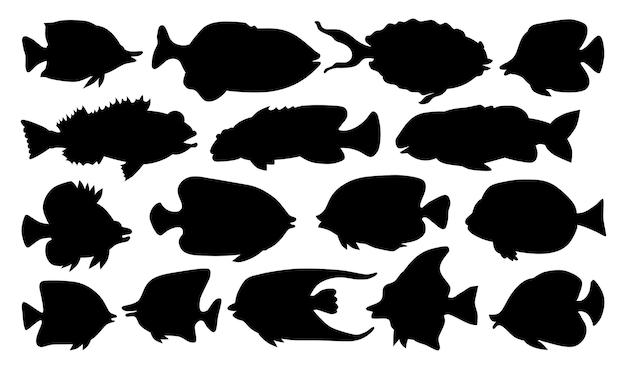 熱帯水族館の魚のコレクションのシルエット