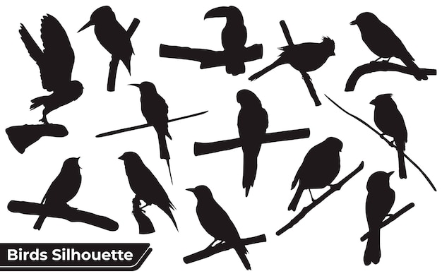 Collection of sitting and flying bird silhouette
