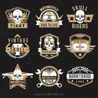 Collection of skull logos with brown details