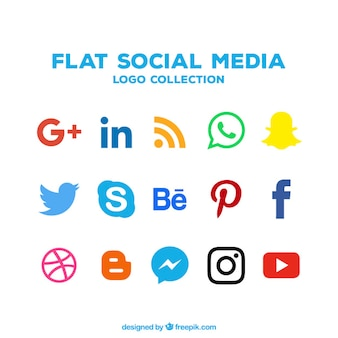 Collection of social networking icons in flat design Premium Vector