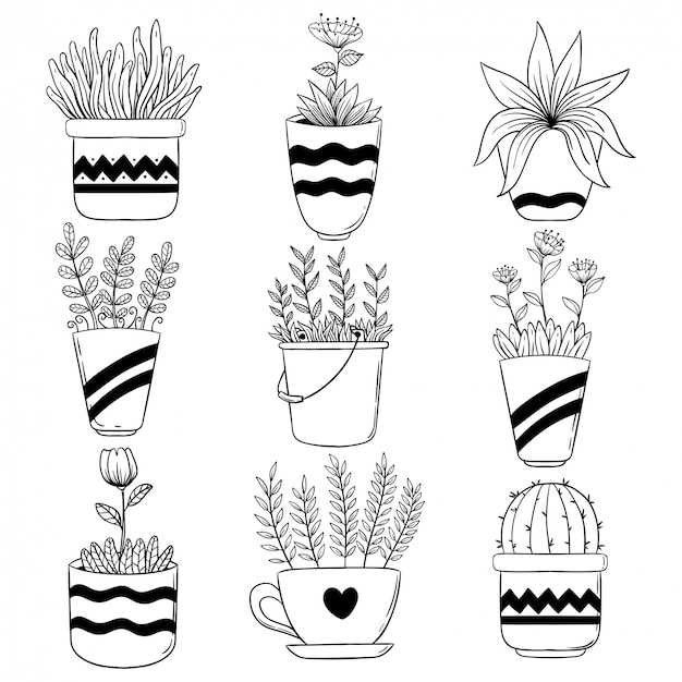 Collection of spring flower in pot with hand drawn or sketch style
