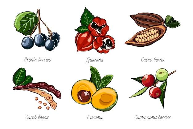 Raccolta del concetto di superfood