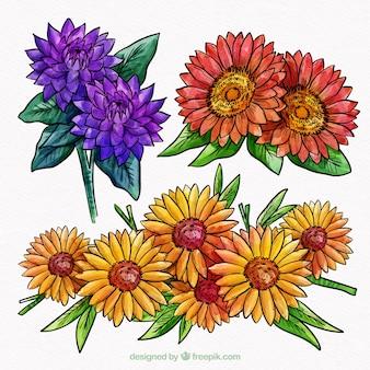 Raccolta di tre fiori