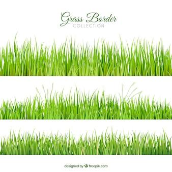 Raccolta dei tre confini erba realistiche
