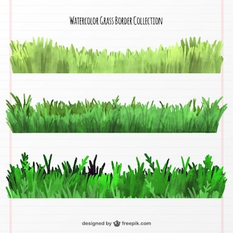 Collection of three watercolor grass borders