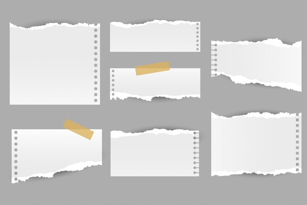 Collection of torn ripped paper notes sheets
