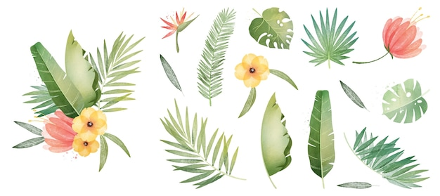 Collection of tropical plants and leaves