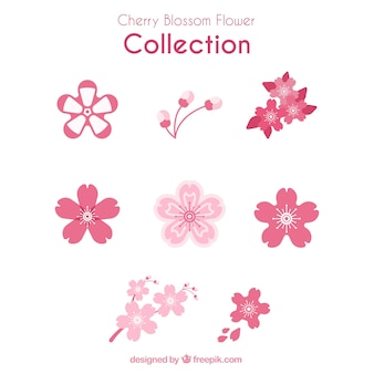 Collection of variety of cherry blossoms