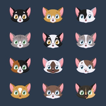 Collection of various cat avatars
