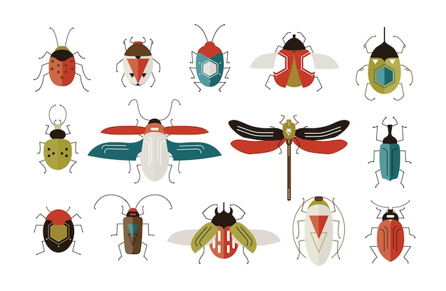 Collection of various colorful geometric insects with wings and antennas on white