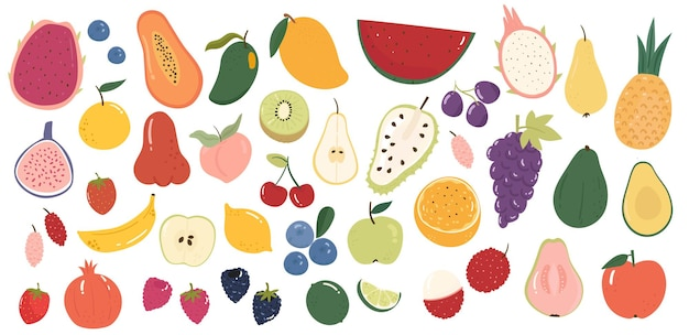 Collection of various fruits cute hand drawn illustration