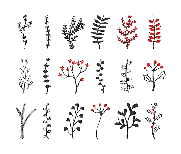 Collection of vintage flowers isolated illustration
