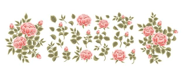 Collection of vintage rose, peony flower, leaf branch, feminine floral bouquet arrangements