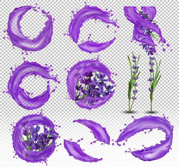 Collection violet lavender with liquid. splashes water on lavender. 3d realistic illustration.
