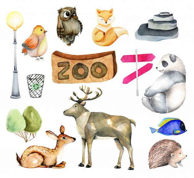 Collection of watercolor animals with elements and attributes of the zoo