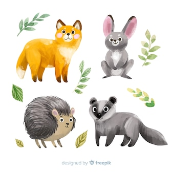 Collection of watercolor autumn animals