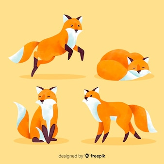 Collection of watercolor autumn fox