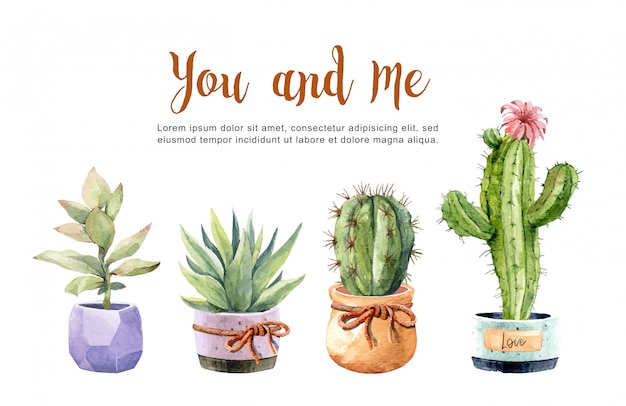 Collection watercolor cacti and succulents with pots.