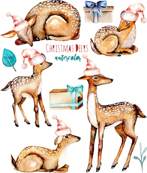 Collection of watercolor christmas deers