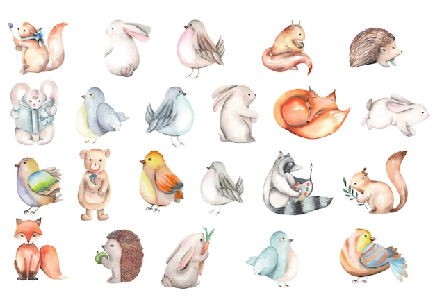 Collection of watercolor cute forest animals illustrations