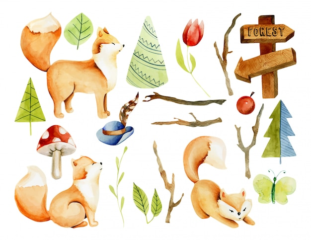 Collection of watercolor cute foxes, forest plants and elements, hand drawn isolated