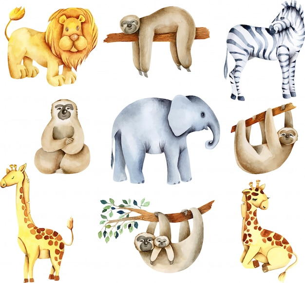 Collection of watercolor exotic african animals (lion, elephant, sloths, giraffes, zebra)
