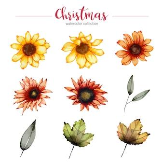 Raccolta di acquerello illustrazione bellissimo fiore