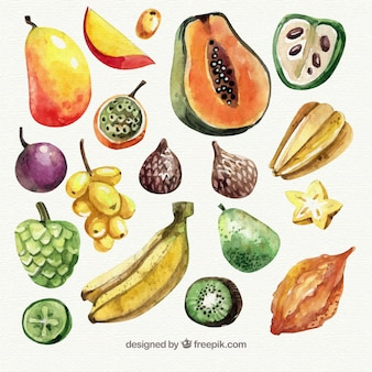 Collection of watercolor pieces of fruit