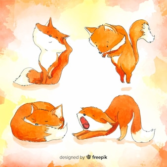 Collection of watercolor wild foxes