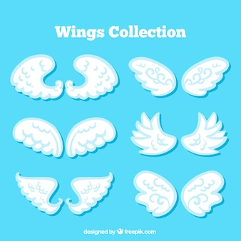 Collection of white wings in flat design