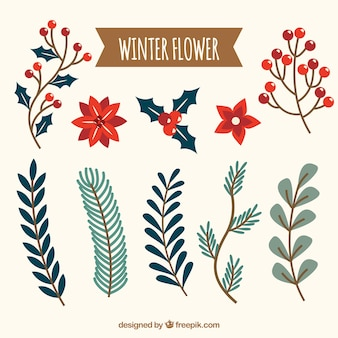Collection of winter flower