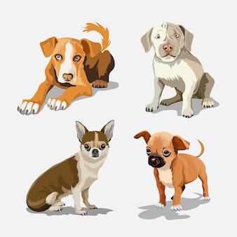 さまざまな品種のかわいい犬のコレクション。白い背景の上の面白い犬のセット。毛皮で覆われた人間の友人の家の動物。